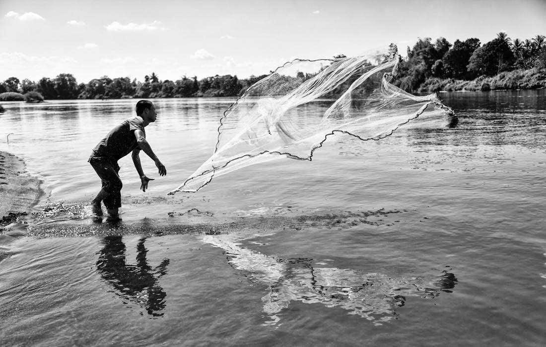 Fiske med nät